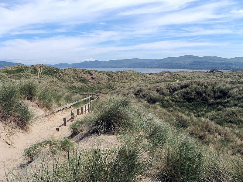 File:Ynyslas Sand Dunes 1.jpg