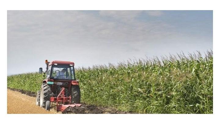 Νέοι αγρότες: Όλα όσα πρέπει να γνωρίζετε για το πρόγραμμα με ενισχύσεις από 35.000 έως 40.000 ευρώ