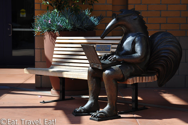 UC Irvine: Anteater on the Laptop