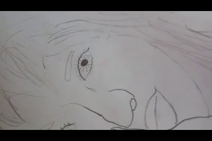Lisa Blackpink Anime Drawing Easy
