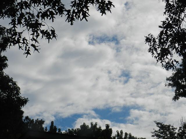 skywatfDSCN6332