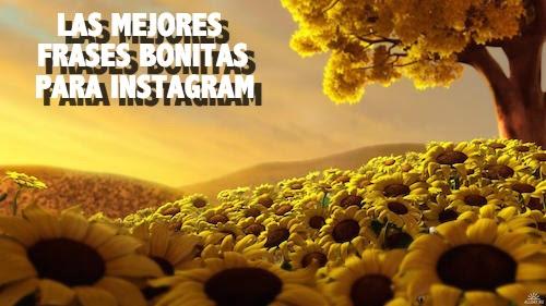 Las Mejores Frases Bonitas Para Instagram