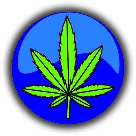 ganja daun simbol gambar vektor gratis  pixabay
