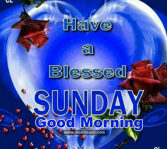 Have A Blessed Sunday Good Morning Pictures Photos And Images For
