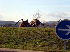 The Giant Ants of Bédarieux #2
