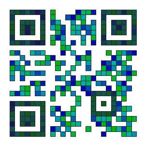 QR dooid.com 300px