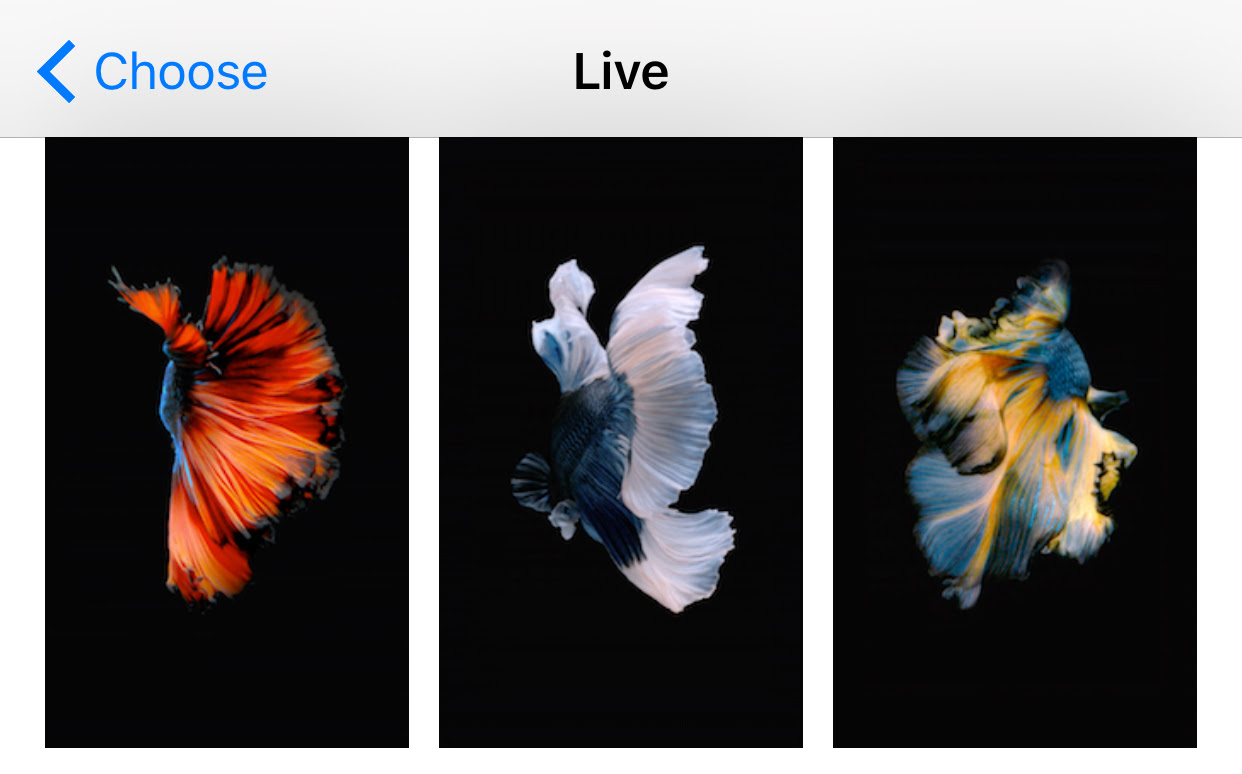 Guide: make custom live wallpapers for your lock screen and