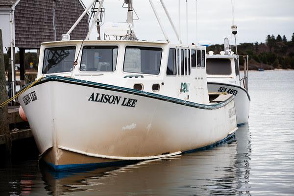 edgartown harbor, boats