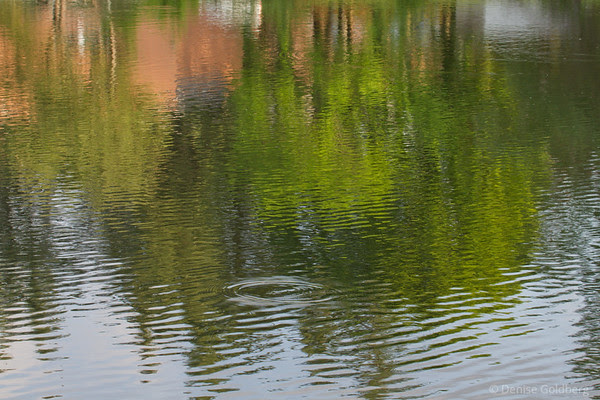 reflections in ripples