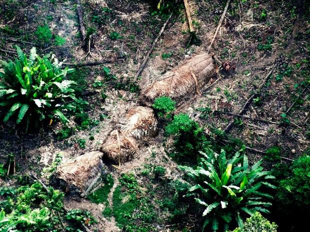 Imagem do Vale do Javari; registrou foi feito Foi tirada em abril de 2011 em sobrevoo de monitoramento da Funai (Foto: Divulgação/Funai)