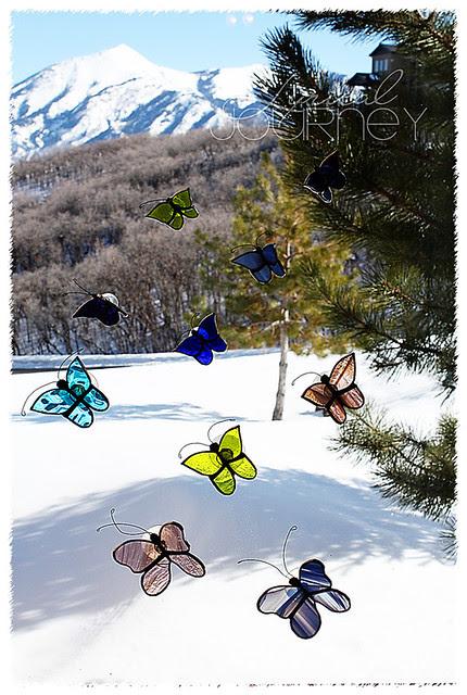 Butterflies small