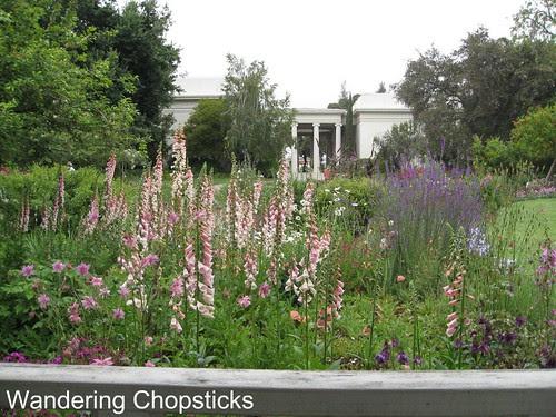 The Huntington Library, Art Collections, and Botanical Gardens (Rose Garden) (Spring) - San Marino 13