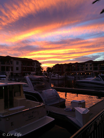 Marina sunset at Naples Bay Resort