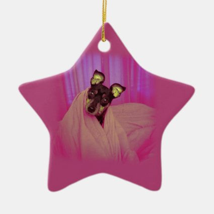 Cute little puppy christmas tree ornament