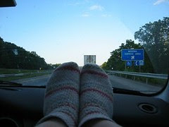 Socks Enjoying View