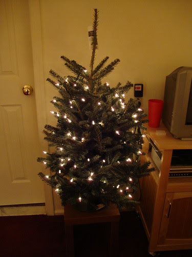 my real tabletop tree!  12/13/09