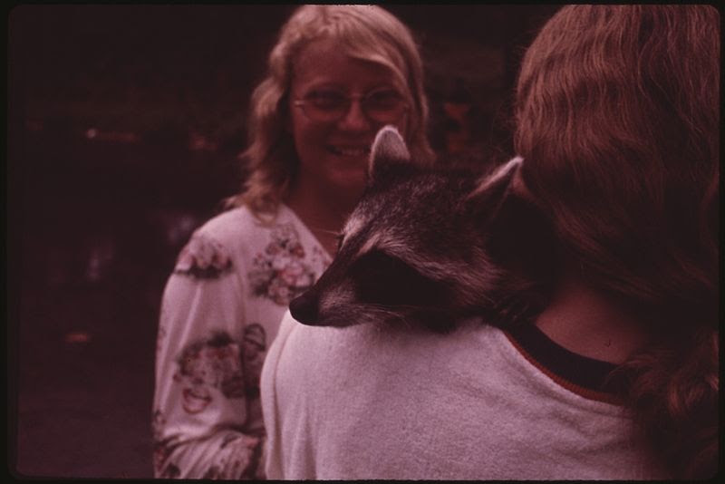 File:MULKY SQUARE GIRL OFFERS HER RACCOON, BUT IT STILL ISN'T GOOD ENOUGH TO WIN HER A PLACE IN THE GANG - NARA - 553514.jpg