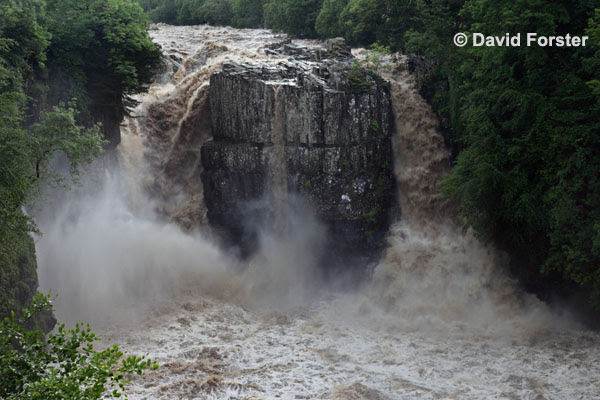 05D-1761 High Force Waterfall on the River Tees After Thunderstorms and Heavy Rain Caused Flash Flooding on 28.06.12