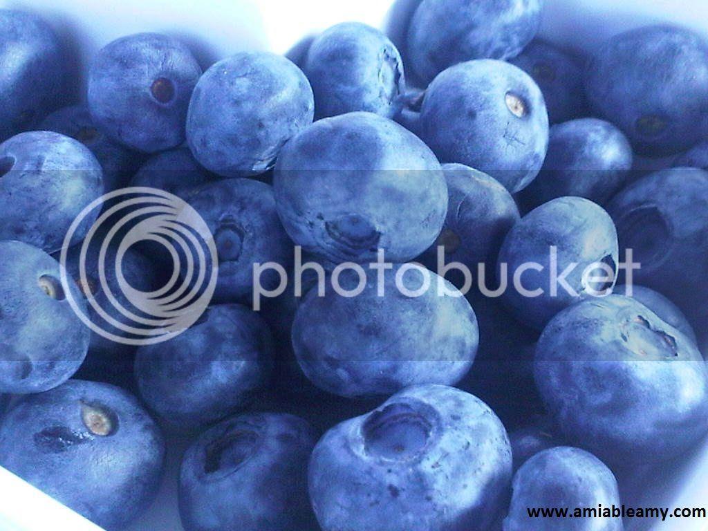 blueberry photo blueberry_zpseab5798c.jpg