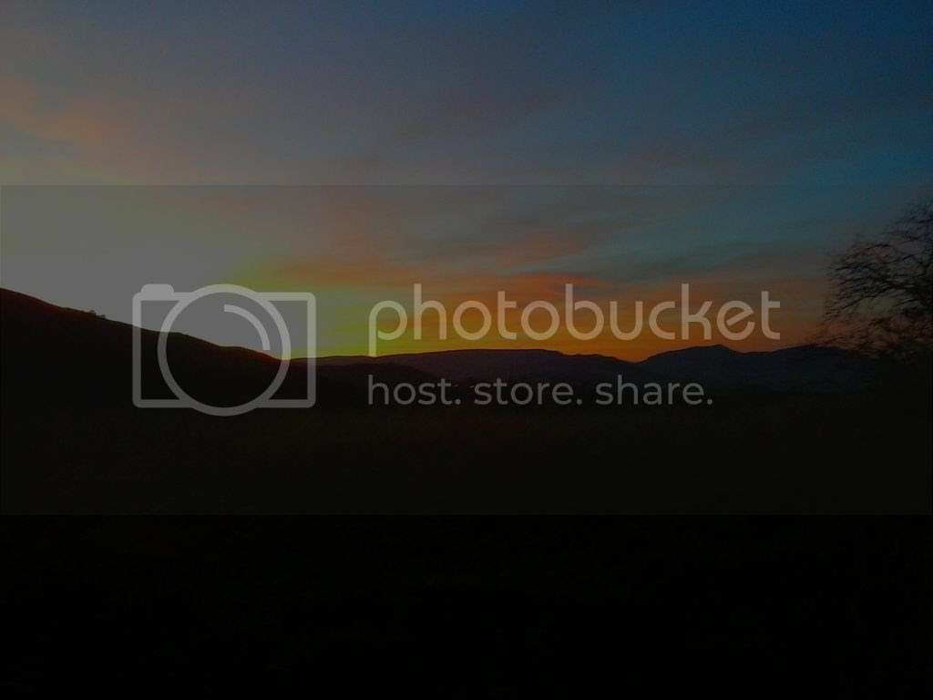photo CAM00446_zpssdjbvkid.jpg