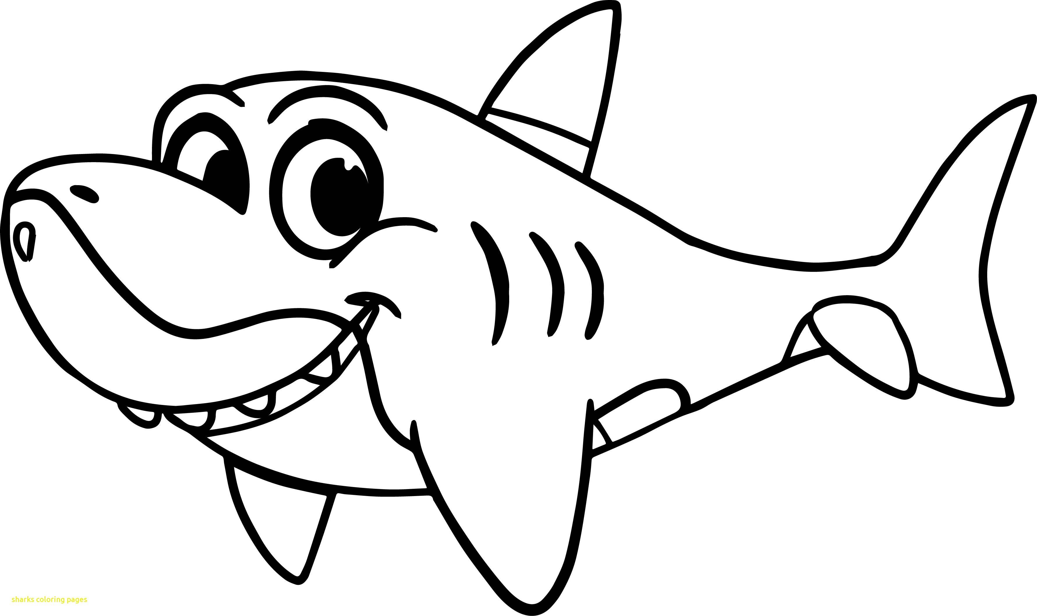 Funny Shark Drawing at GetDrawings   Free download