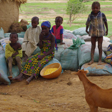 Children in Zamfara sit atop bags of lead-contaminated soil, which were removed from their village during cleanup