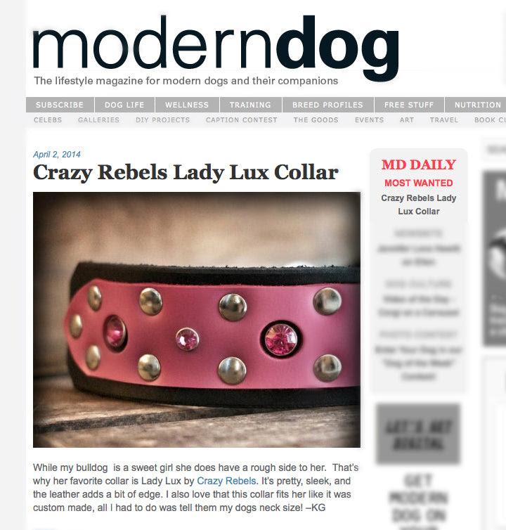 The Lady Lux Collar On Modern Dog Magazine Crazyrebelscom