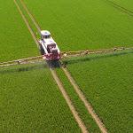 Pesticides: «Ils nous disaient que ce n