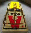 Mouse Trap.JPG - http://flickr.com/photos/billselak/427719926/