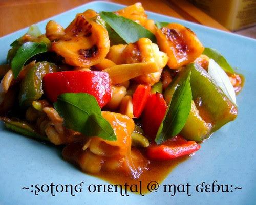 sotong oriental