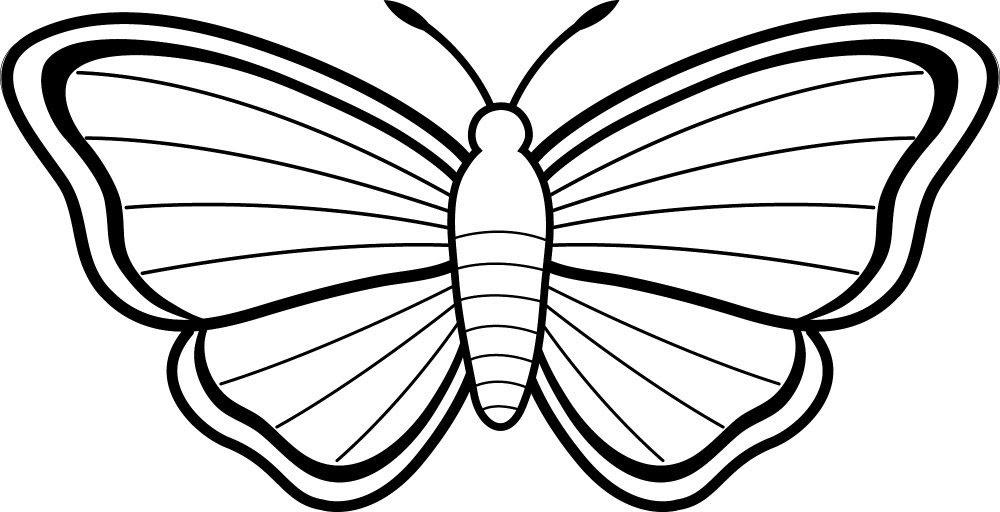 Dibujos Para Colorear De Mariposas Imágenes Y Fotos