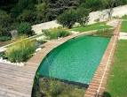 Pool Picture: Natural Swimming Pool Designs LaurieFlower 025 ...
