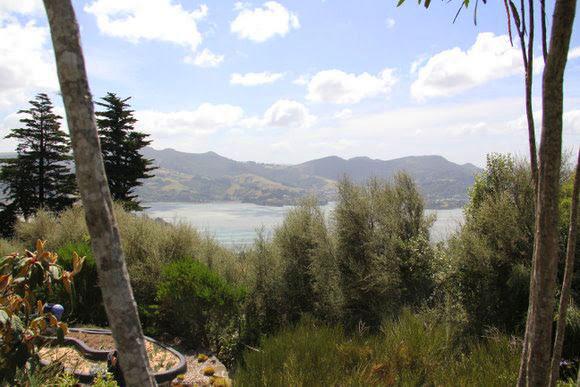 Larnach-Castle-Dunedin-NZ_22