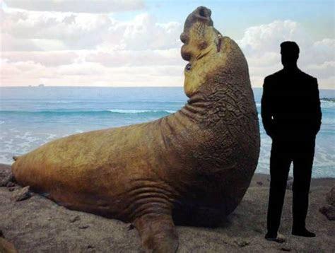 Top 20 Giant Animals Around The World   XciteFun.net