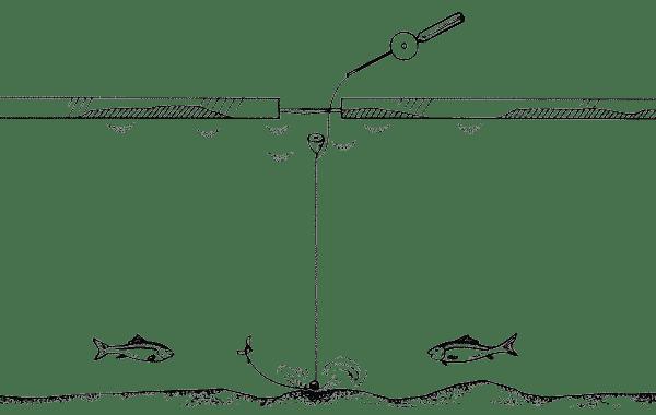 Ловля плотвы с постукиванием грузилом о дно