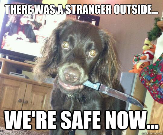 Image result for protective dog funny