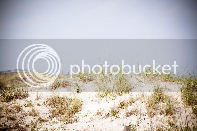 photo dunes_zps623f1b64.jpg