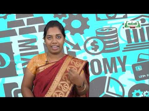 11th Economics நுண்ணிய பொருளியல் அறிமுகம் Kalvi TV