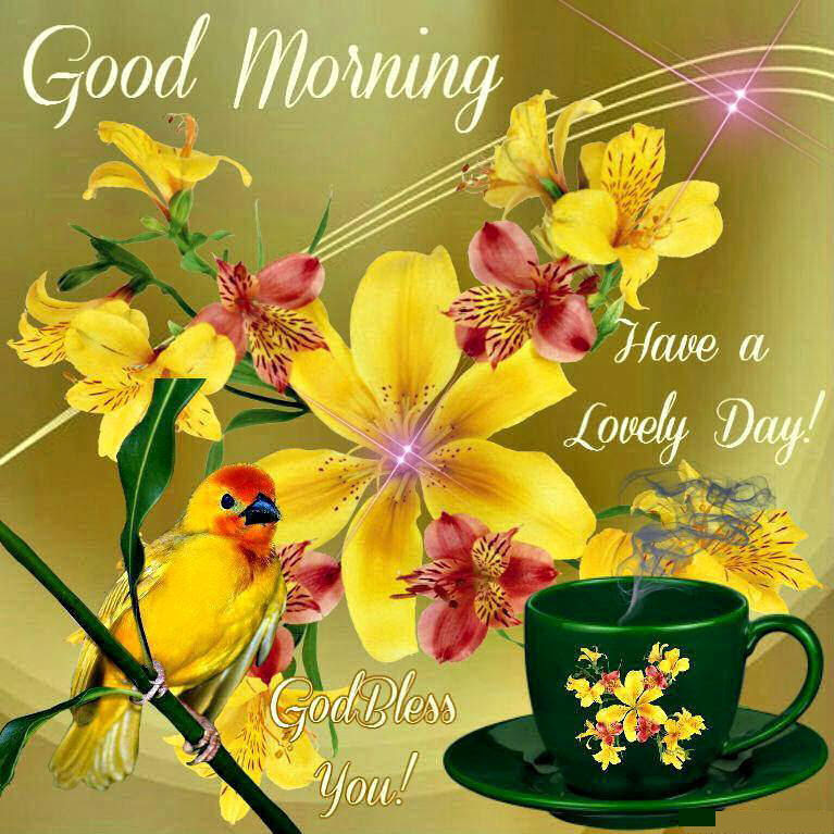 Lovely Spring Good Morning Quote Pictures Photos And Images For