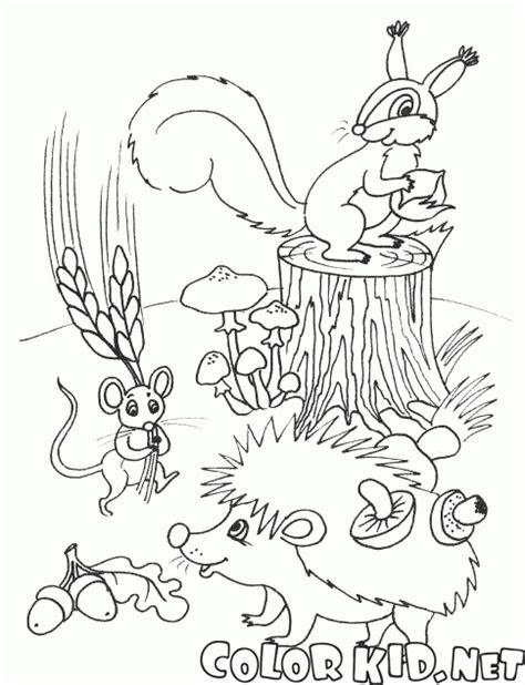 boyama sayfasi hayvanlar stoklari yapmak
