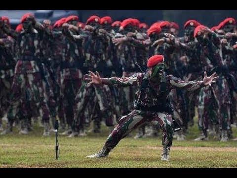 Sumpah, Aksi Penyemaran TNI Keren Banget
