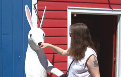 rabbitpunch