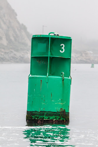 Green Canister Buoy Number 3 in the Morro Bay, CA Harbor Channel adjacent to Morro Rock, inside the breakwater.