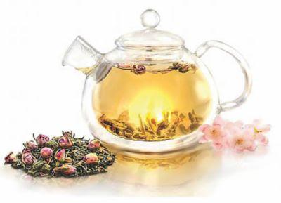 Teavana Rooibos Tropica Tea