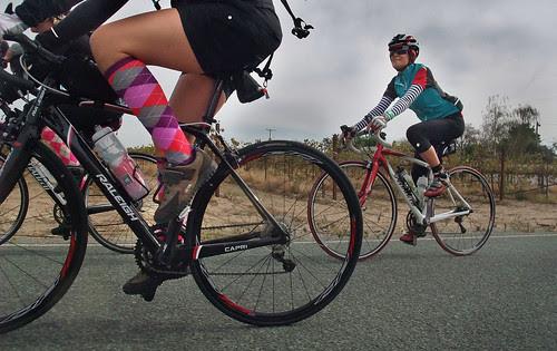 Giro d' Vino 2013 socks
