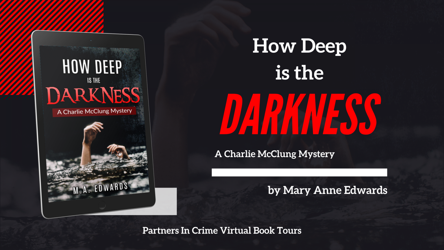 How Deep Is The Darkness by Mary Anne Edwards Banner