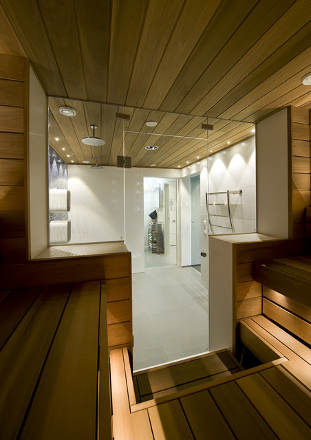 Swimming pool, shower room and sauna divided by glass doors