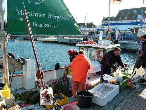 Frischfisch vom Kutter