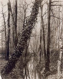 Un tramo del Bièvre, fotografiado por Eugène Atget en 1891 (imagen procedente de ravcov.blogspot.com)