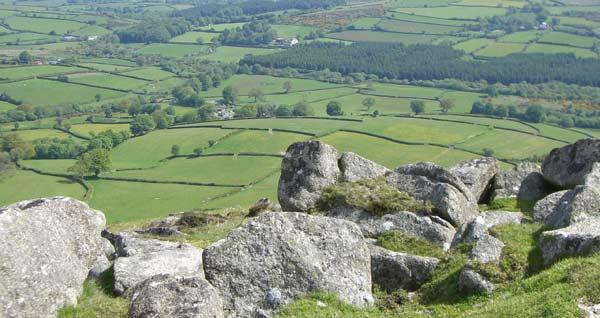 http://www.lowerhooknerfarm-dartmoor.co.uk/image/U-King-Tor-above-the-farm.jpg